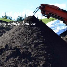 Công dụng và cách bảo quản phân trùn quế trunque